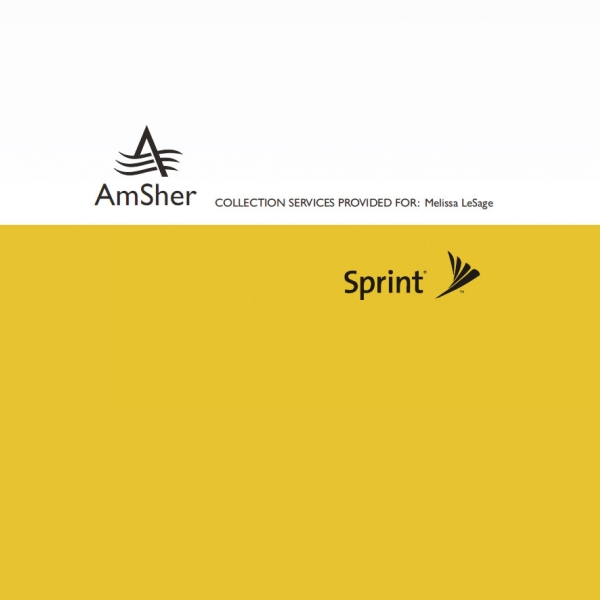 AMSHER & SPRINT